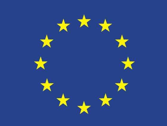 eu declaration about iran jamming